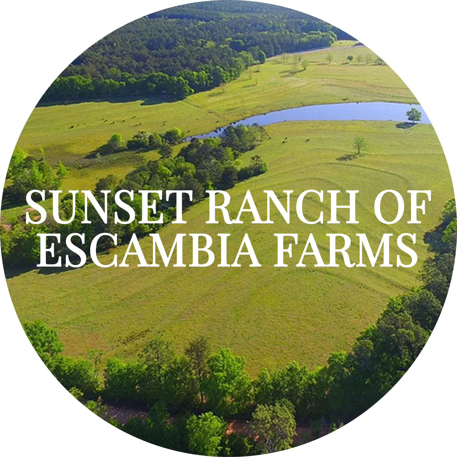 Sunset Ranch of Escambia Farms